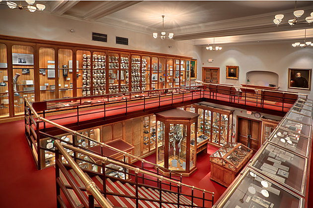 Mutter Museum Photos