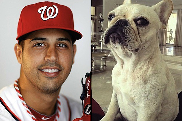 Gio Gonzalez Dog Rug Burn