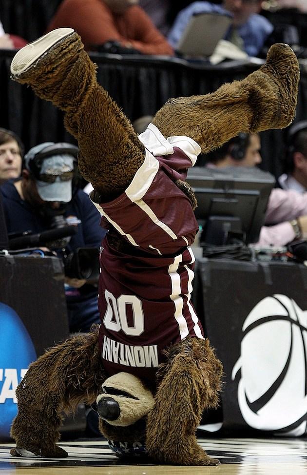 NCAA Montana Mascot