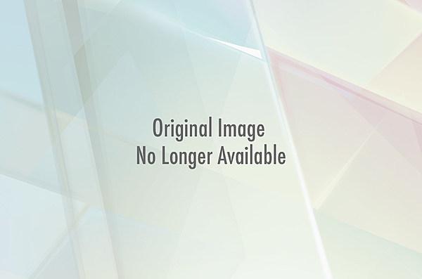Torrie wilson nude movie photos